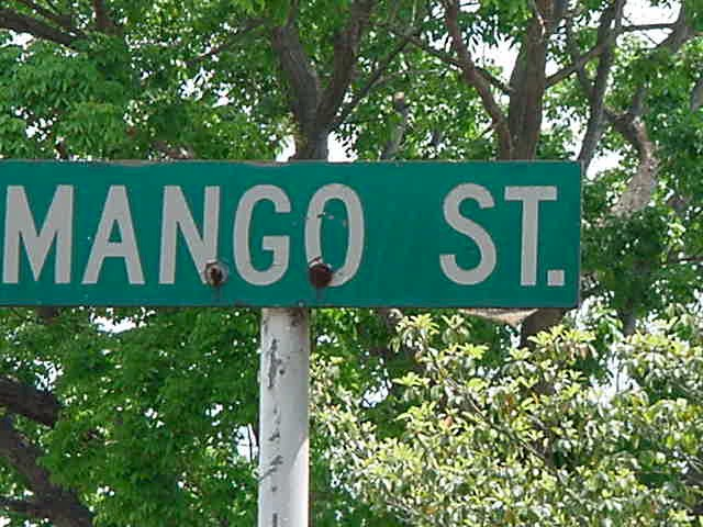 Themes House On Mango Street - Lessons - Tes Teach